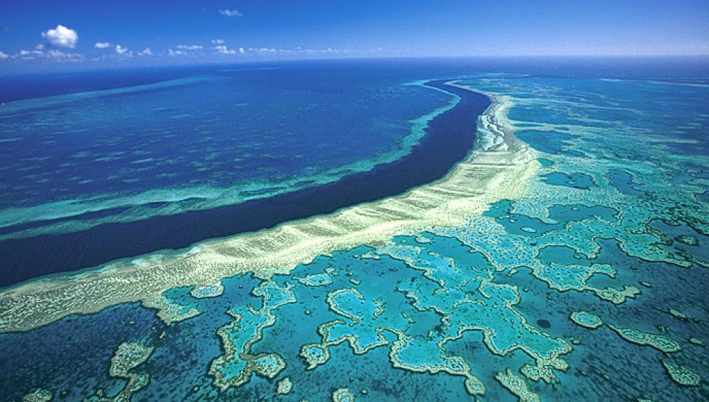 La gran barrera de coral