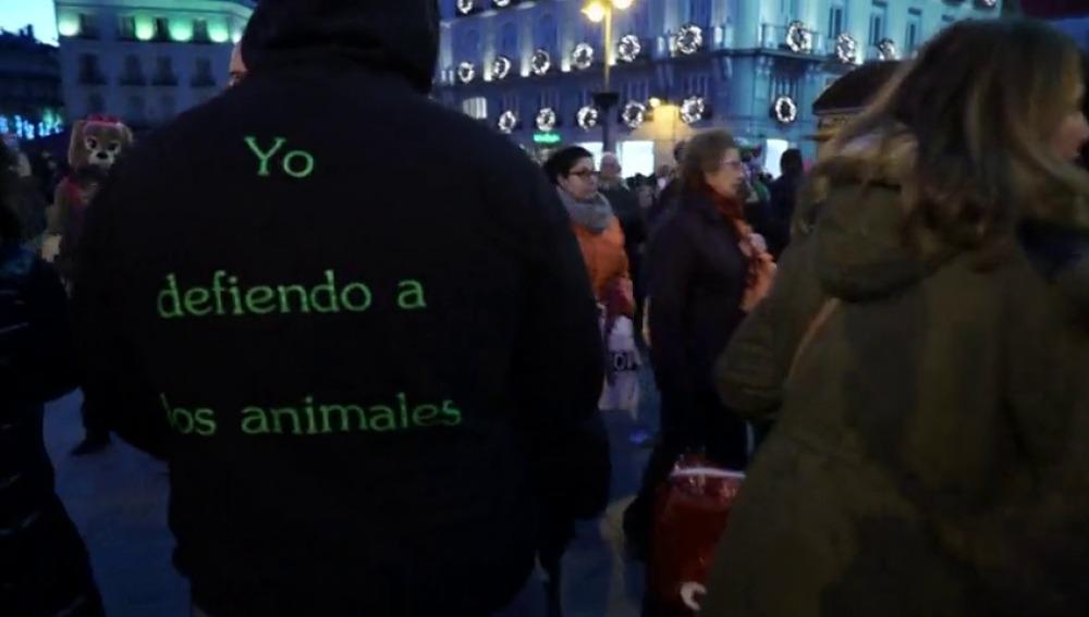 Frame 16.956014 de: La lucha de 'Gladiadores por la paz' para erradicar el maltrato animal